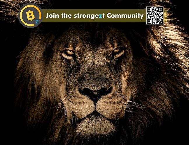 LionBTCZ