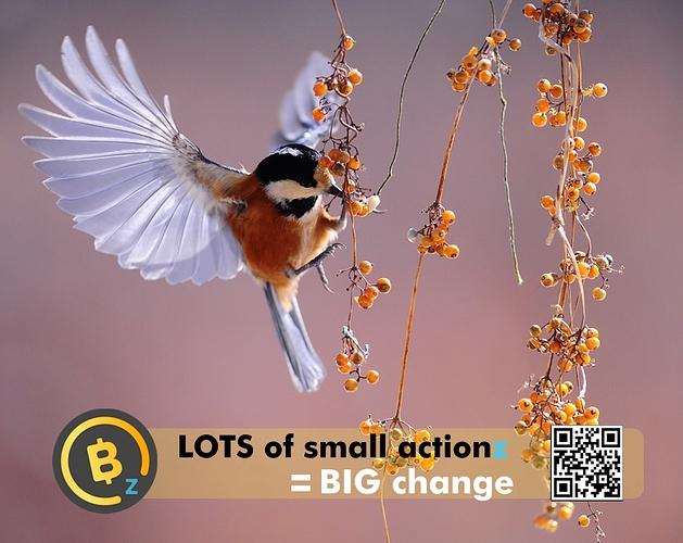 SmallActionzBTCZ